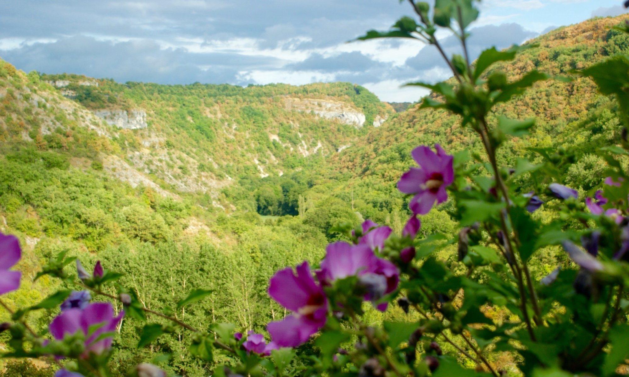 Du lot la dordogne 5 le belv d re une vue couper - Les jardins de la louve rocamadour ...